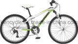 [24ينش] [21سبيد] [متب] درّاجة/[موونتين بيك]/جبل درّاجة/تعليق درّاجة/[موونتين بيك] عمليّة بيع