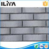 Brique cultivée faite par homme pour le revêtement de mur (YLD-20001)