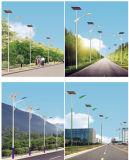 5mポーランド人36W太陽LEDの街灯