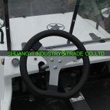 China Newest Electric ATV mit 12V20A