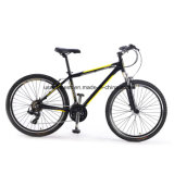 Adultのための熱いSale Mountain E-Bicycle