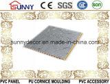 Panneau de mur intérieur stratifié de PVC et panneau de plafond de PVC