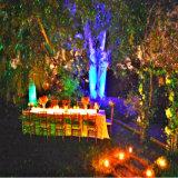 2016 جديدة عمليّة بيع [رغب] متحرّك يراعة خارجيّ منظر طبيعيّ أضواء/عيد ميلاد المسيح زخرفة/عطلة إنارة