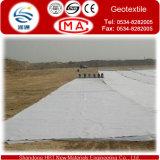 Pflasterung von Road Geo Textile/Geotextile/Nonwoven Geotextile/Nonwoven Needle Punched Geotextile auf Sale