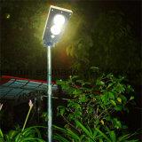 luz de calle solar separada 85W