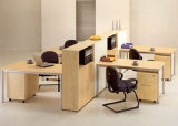 Qualitäts-Büro-Partition-Arbeitsplatz mit hölzernem Schrank (SZ-WST621)