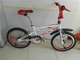"Bicicleta Mini BMX de 20 ""sem rajada de estilo (AOK-BMX010)"