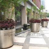 Bac d'acier inoxydable de jardin de bac de planteur de bac de fleur de bac d'arbre d'horizontal