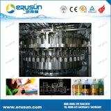 Boissons carbonatées dans la bouteille en plastique de la machine du lavage 300ml-1.5liter 3 in-1, de remplir et recouvrir