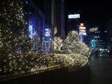 LED Eiffelの庭ライト祝祭のモールの装飾