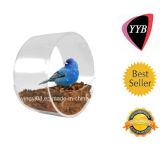 Alimentatore circolare originale su ordinazione dell'uccello della finestra - Camera acrilica libera dell'uccello per i piccoli uccelli selvaggi