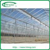 Glasgewächshaus für Ebbe und Durchfluss-System
