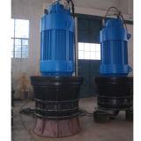축 Flow 또는 혼합 Flow를 가진 잠수할 수 있는 Propeller Pump (ZQB/HQB)