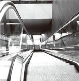Especificação padrão feita na escada rolante de China