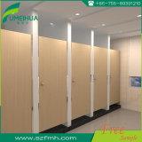 Перегородки туалета Китая высокого качества Preschool феноловые