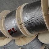 Câble métallique 7X19 inoxidable du SUS 316 6mm d'acier inoxydable de Tianli
