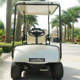 도매 배터리 전원을 사용하는 Seater 편리한 골프 카트 1개 (Dg C1)
