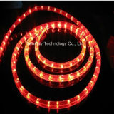 屋外の装飾ライト環境に優しい2本のワイヤー縦LEDロープライト