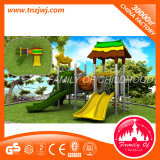 2016 populäres Design Outdoor Playground Slide Equipment für Sale