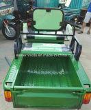 المتأخّر مصنع عمليّة بيع درّاجة ثلاثية كهربائيّة لأنّ شحن أو مسافر