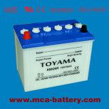 3-Jährige Garantie-Batterie-preiswerte Autobatterie-Selbstselbstbatterie 12V 24ah