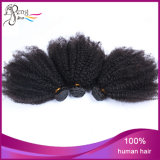 Cabelo humano indiano da extensão do cabelo Curly do Afro do cabelo humano de 100%