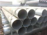 Dipped caldo Galvanized Steel Tube per Fence Post