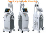 Gelo gordo do punho de 4 Cryo que Slimming a máquina de Cryolipolysis