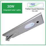 Tudo em uma lâmpada ao ar livre solar 30W do diodo emissor de luz da fábrica de China