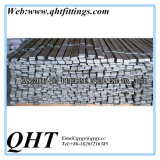 Польза прессформы стальные специальные и холод - нарисованная квартира углерода метода стальная
