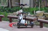 10 Rad-elektrischer Roller des Zoll-500With800W 3 mit Sitz