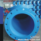 Form oder Ductile Iron Flexible Disc Swing Check Valve
