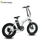 20インチのスマートなEバイク電池48Vの折るバイクの電気バイク