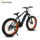 2015新しい脂肪質のタイヤの販売のための電気バイク500W山のElectiricの自転車山のEバイク