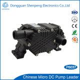 12V 24V CNC 장비를 위한 소형 고장력 물 냉각 펌프