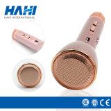 Microfoon van de Karaoke Bluetooth van de Speler van de Spreker van China USB de Draadloze Draagbare