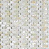 Weißes Shell-Mosaik