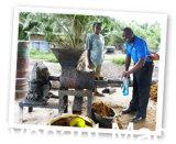 Pressa dell'olio di palma