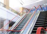 Preço comercial da escada rolante do edifício de Bsdun