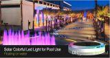 IP68 indicatore luminoso di galleggiamento variopinto chiaro solare romantico esterno della piscina LED RGB LED