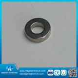 Seltene Massen-Ring-Neodym-Magnet für Lautsprecher-Magneten