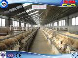 La granja avícola/las aves de corral de la estructura de acero contiene/la casa del ganado/del caballo (FLM-F-020)