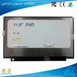 Vend 11.6 '' panneaux d'écran de visualisation de TFT LCD de N116hse-Ej1 IPS pour des moniteurs de FHD