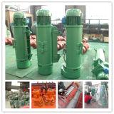 Type élévateur électrique antiexplosion de BCD /Bmd
