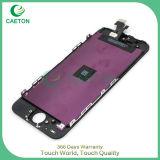 Fabrik-Großhandelsqualitäts-Bildschirm-Schoner LCD für iPhone5/5s