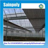 고추를 위한 Sainpoly 상표 다중 경간 필름 온실