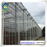 Estufa de vidro da multi extensão da alta qualidade com sistema hidropónico