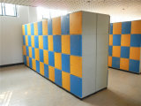 ABS Plastic Sport Locker voor Stadium