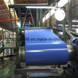 La prima galvanizó la bobina de acero con el conjunto de la exportación