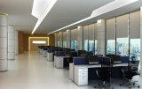 De modulaire Verdeling van het Werkstation van het Bureau van 6 Zetels Rechte Gele (sz-WS147)